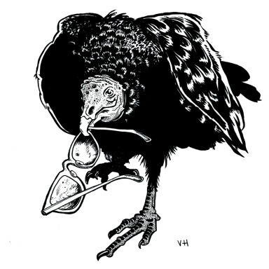 Drawing of buzzard holding eye glasses in beak
