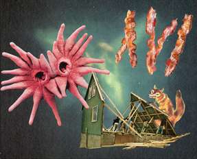 Collage of a mole nose, bacon, and fox entering a housing structure floating in space