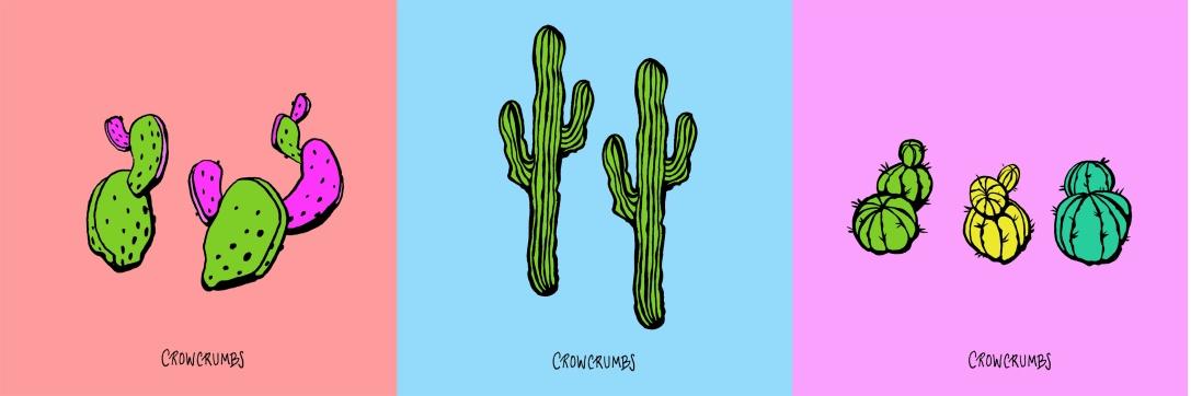 Cacti variety trio